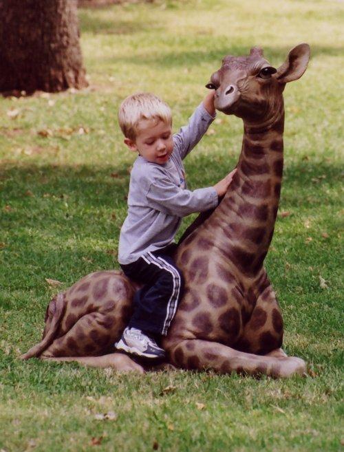 Tom Tischler Bronze  Baby Giraffe